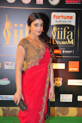Shriya Sizzling in saree at IIFA Utsavam-thumbnail-9