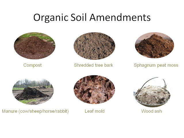 Healthy soil for Organic soil uk