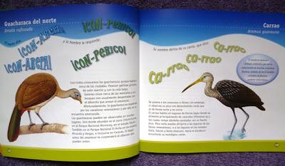 Libro cantos de aves