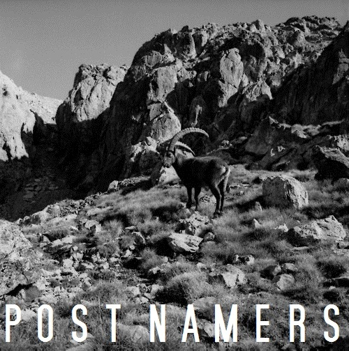 POST NAMERS LP (2012)