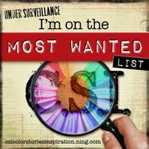 I'm on the Most Wanted for CSI 161