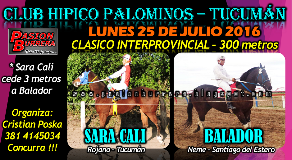 PALOMINOS - LUNES 25 DE JUNIO
