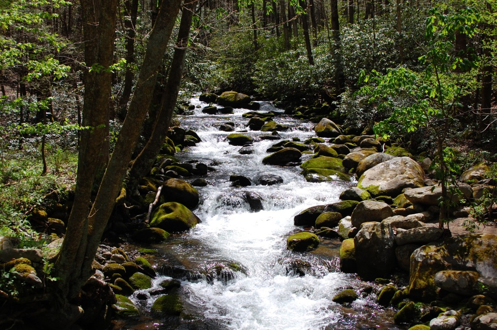 Carolina towns and trails smoky mountains roaring fork for Roaring fork smoky mountains