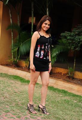 sheena shahabdi from nandeeswarudu actress pics