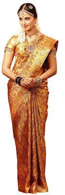 Anuska in Sari