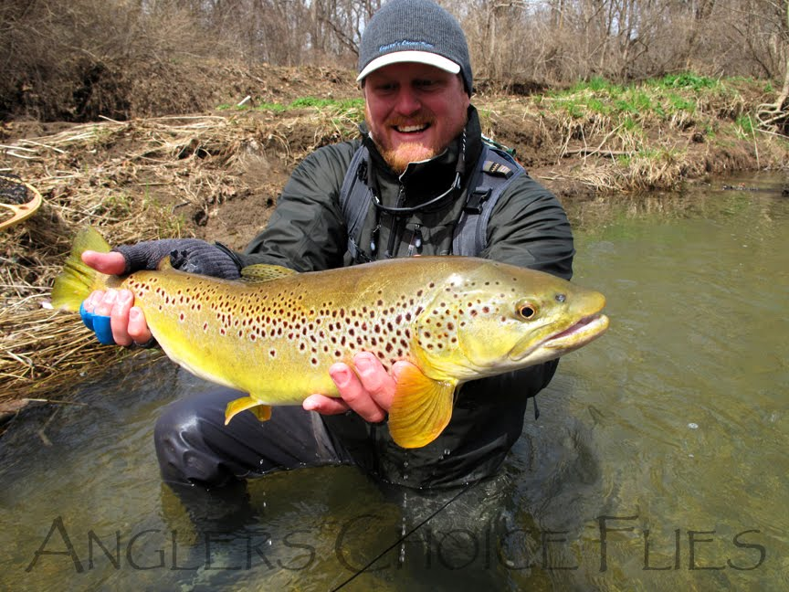 Ohio trophy trout hunter march 2011 for Trout fishing in ohio