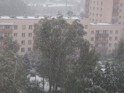 Atak zimy w Krakowie