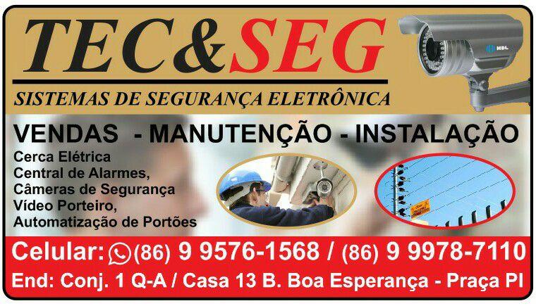 TEC&SEG