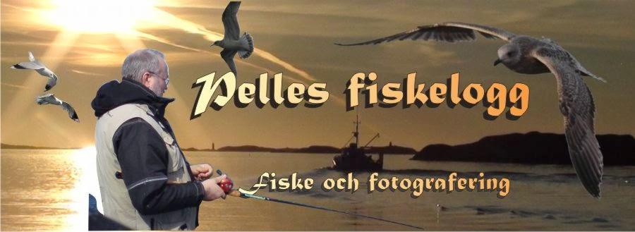 Pelles Fiskeblogg