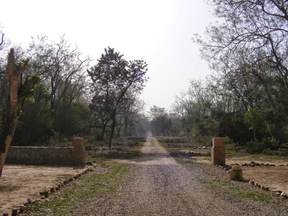 Have We Finally Entered Post >> Corbett National Park The Wanderlust Diaries