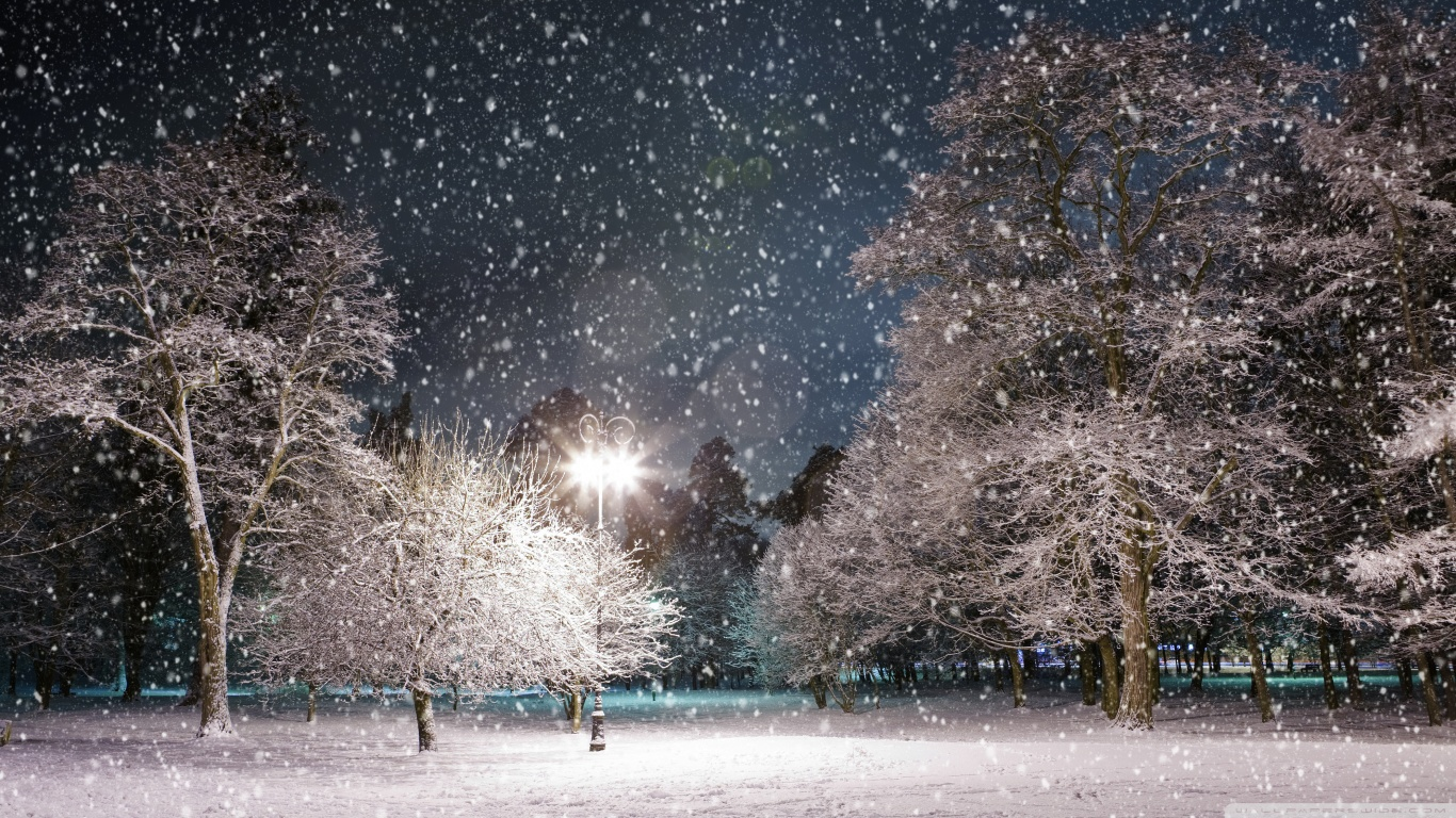 download snow at the - photo #25