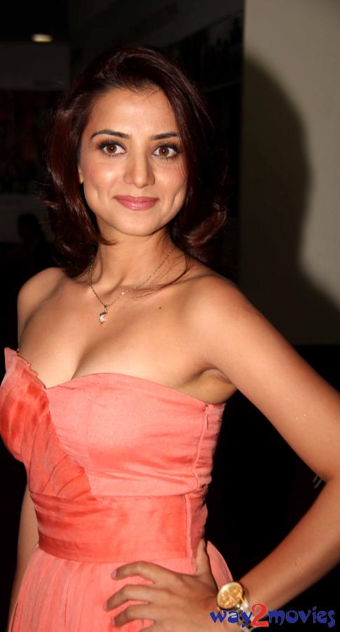 Indian Beautiful Celeb Kulraj Randhawa