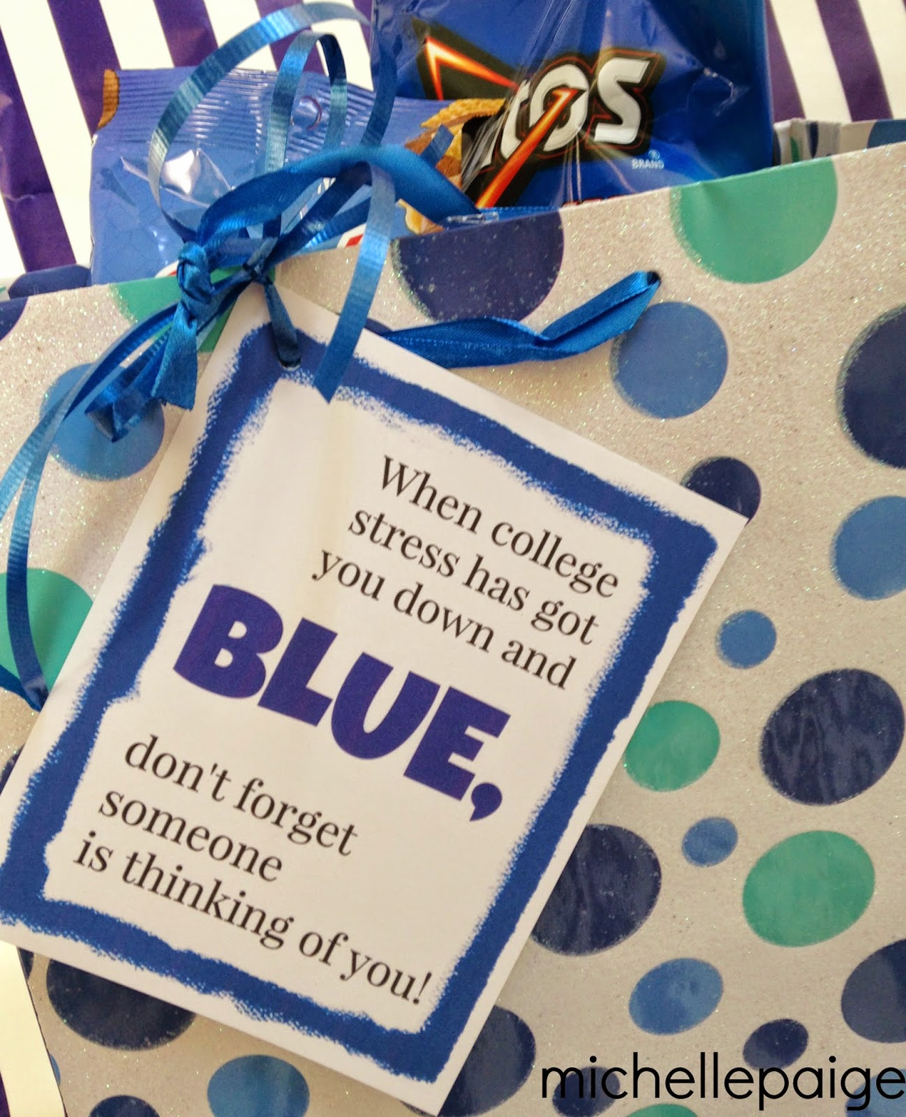 Michelle Paige Blogs Got The Blues Gift For College Students With