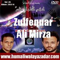 http://ishqehaider.blogspot.com/2013/11/zulfequar-ali-mirza-nohay-2014.html