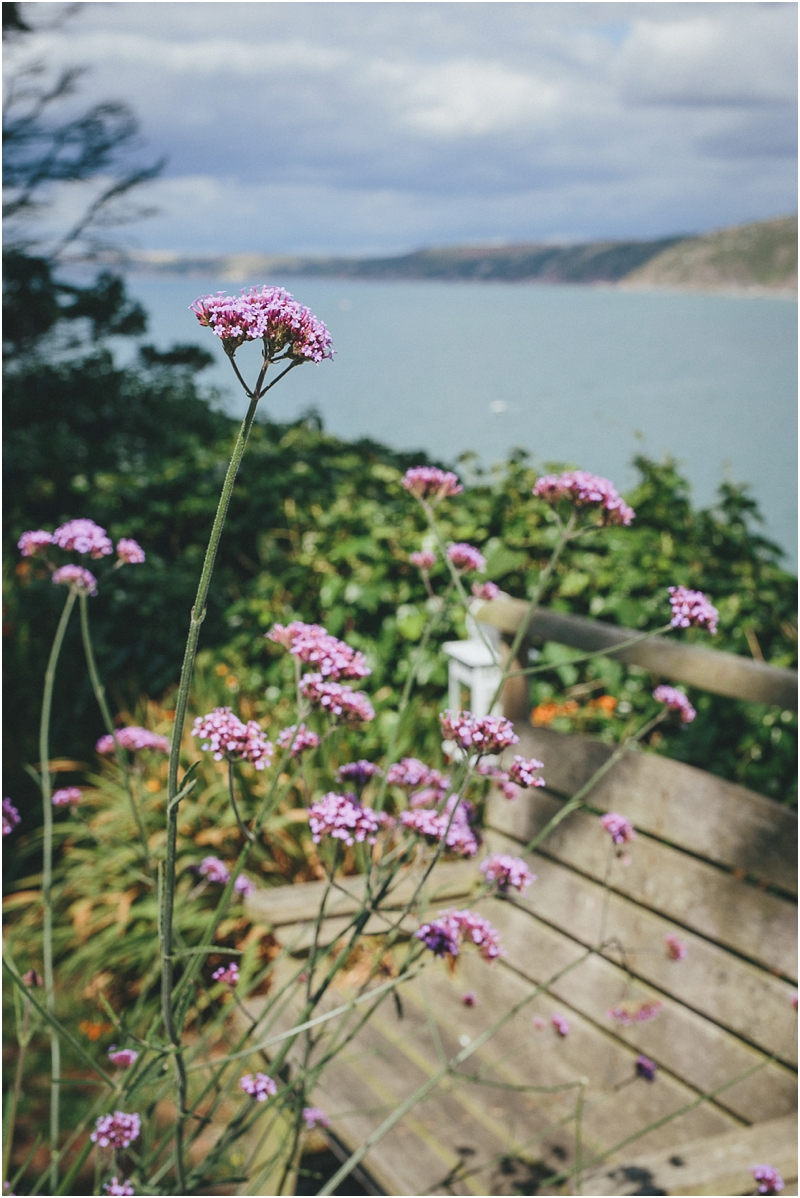 Verbena with the sea behind