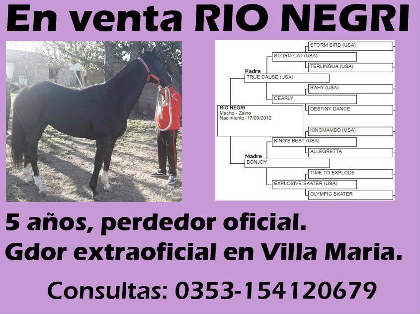 VENTA RIO NEGRI