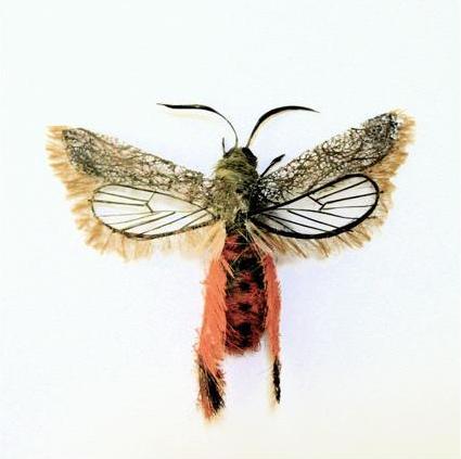 لوحات فنية لأوراق الشجر وبعض الأعمال الفنية من شعر  Hair-insects2