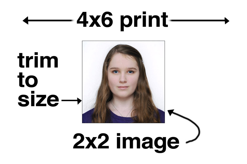 Strobist: The Simple Light: How to Take a Great Passport Photo