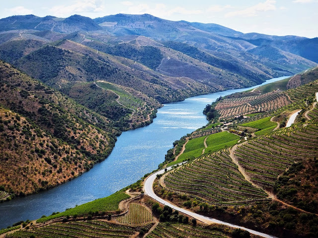 Festival do Vinho do Douro Superior 2014 - reservarecomendada.blogspot.pt
