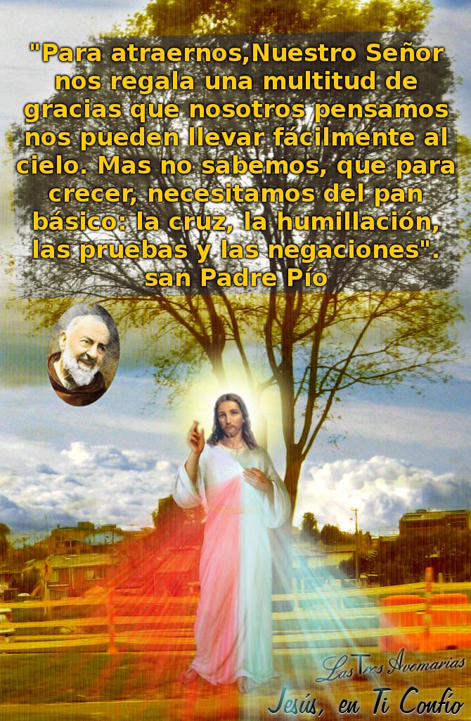 divina misericordia con el padre pio