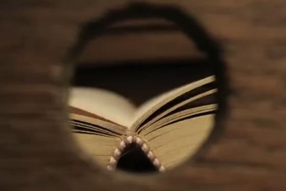 Libro. Historia de un papel arrugado sueña con ser un libro