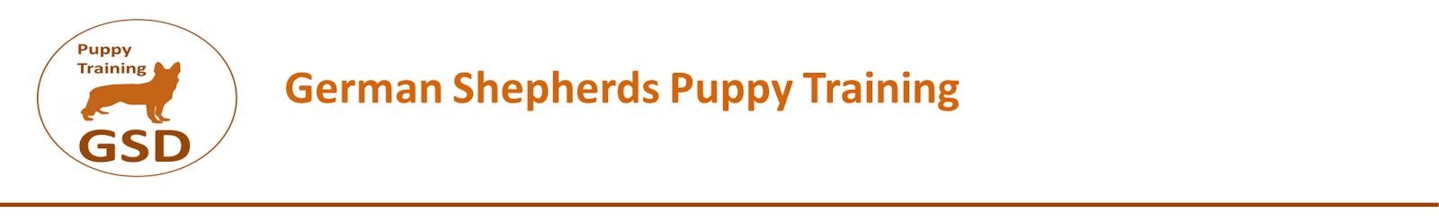 german shepherds  puppy training
