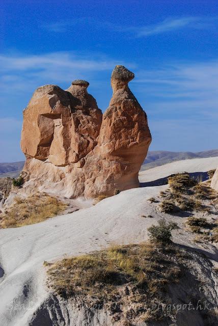 土耳其, turkey, 奇石林, Cappadocia, 駱駝石
