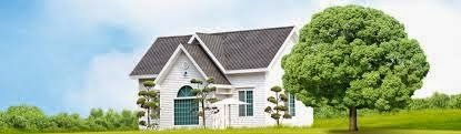 Real Estate Ventures In Vijayawada
