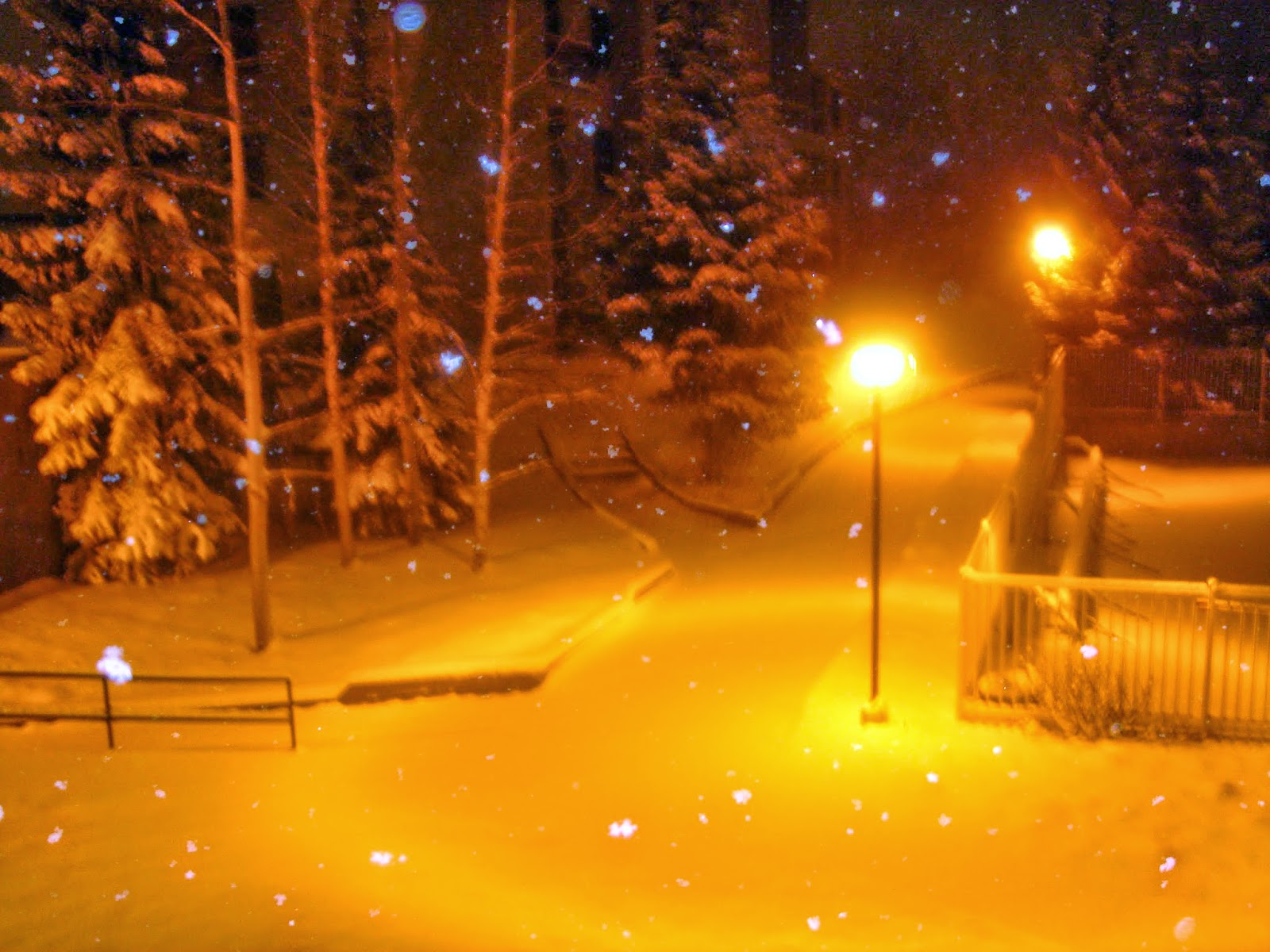Snow Night Wallpaper Picture Gallery