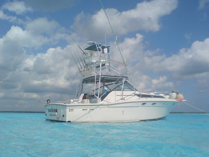 Wellcraft at Cozumel Island Marina