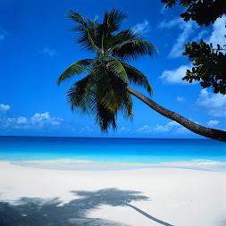 Regalamos un viaje a Cancún*