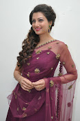 Hamsa Nandini at Bengal tiger audio-thumbnail-13