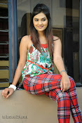 Neha deshpande Photos at Dil Diwana press meet-thumbnail-3