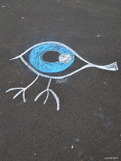 yani's chalk eyebird