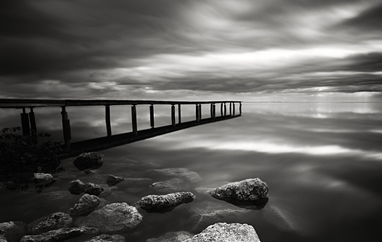 Best photos 2 share a classic black white nature photography