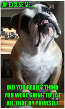 Bulldog Vitamins- Only the BEST for your Bullie kid!