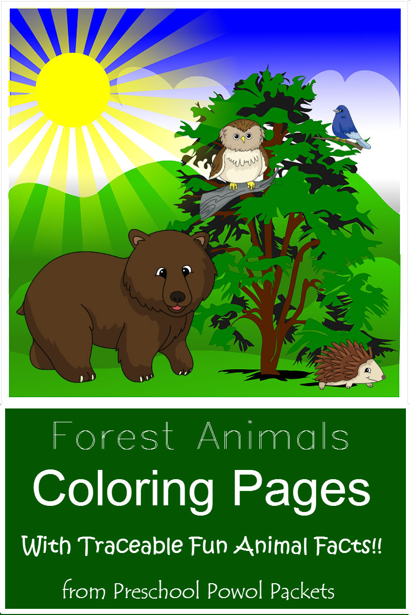 free forest animals coloring pages with traceable fun facts - Coloring Packets