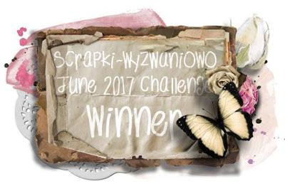Winner June 2017 Challenge