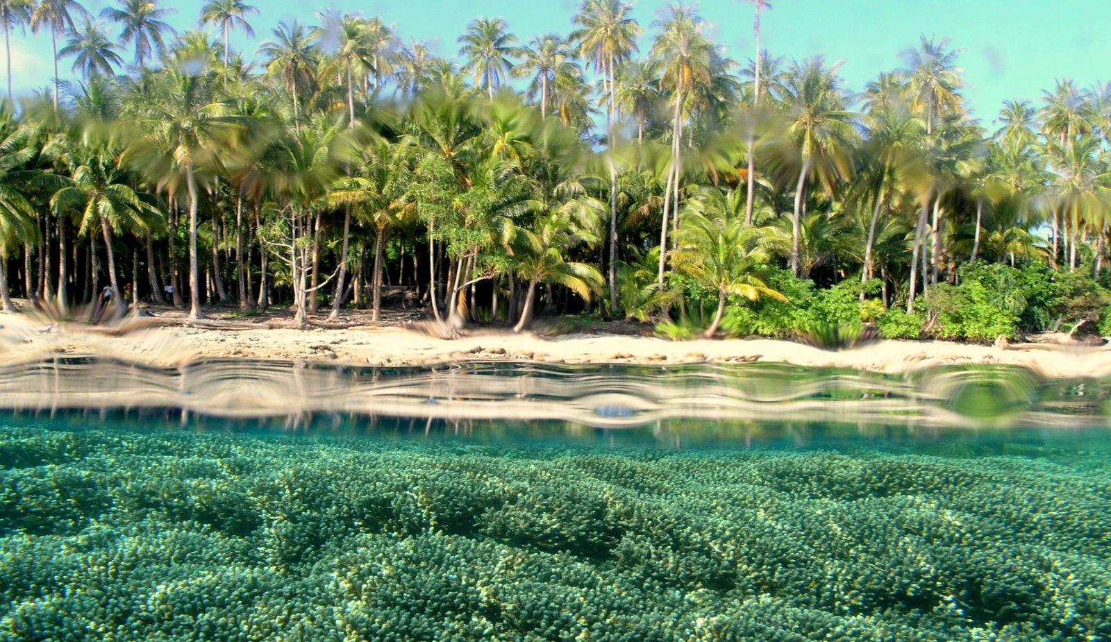 Hasil gambar untuk 2. Kepulauan Padaido di Papua