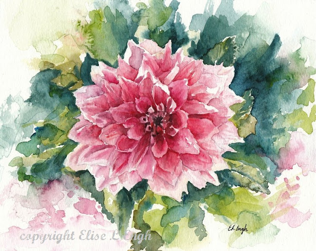 pink dahlia flower watercolor painting