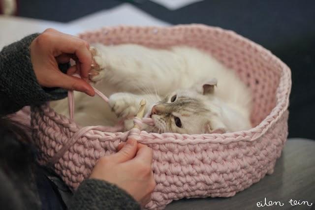 Crochet Pattern For Cat Bed : HANDY DIY: DIY Crochet cat bed