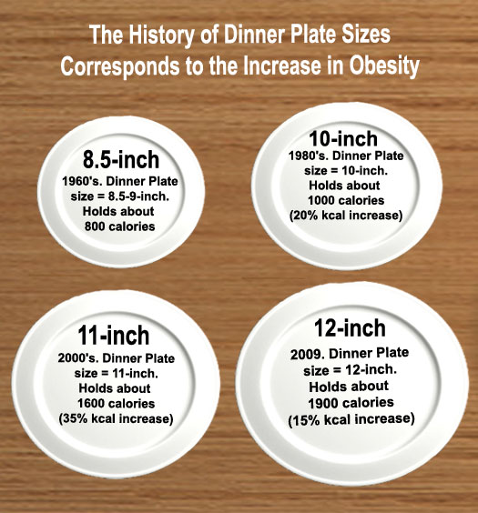 Good-bye Food Pyramid Hello Food Plate  sc 1 st  Dietitians Online Blog & Dietitians Online Blog: Good-bye Food Pyramid Hello Food Plate