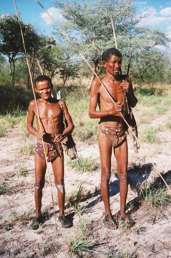an introduction to the kung and other bushman tribes Open document below is an essay on bushmen and solidarity from anti essays, your source for research papers, essays, and term paper examples.