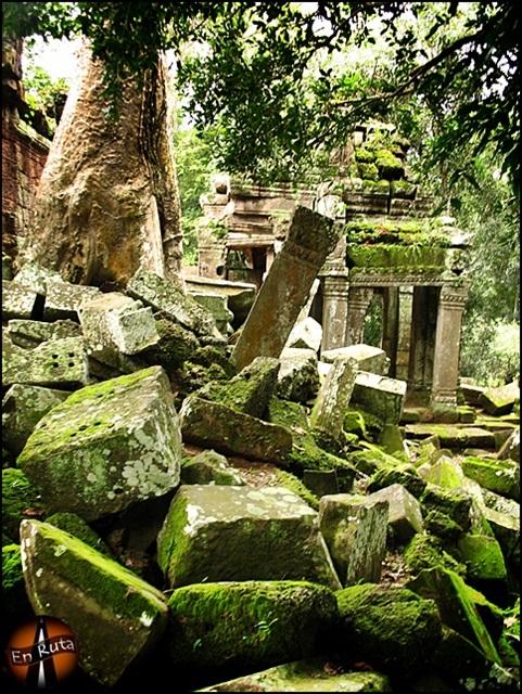 Ta-Prohm-Templos-de-Angkor_4