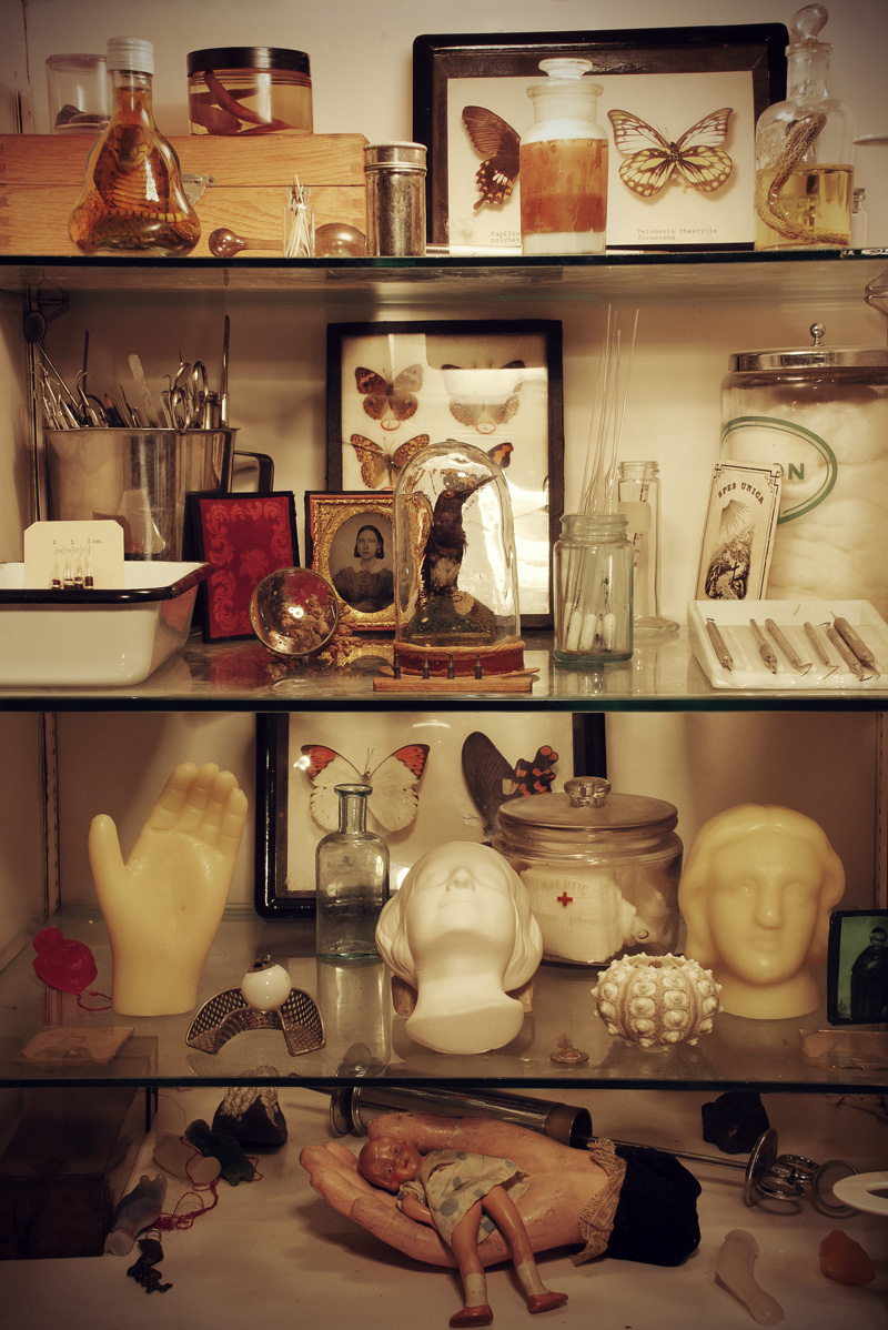 Morbid Anatomy: Morbid Anatomy Library Open Hours This Weekend ...
