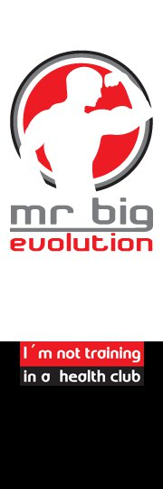 Mr. Big Evolution