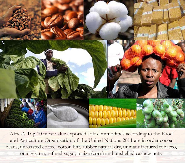 Africa's Top 10 most value exported soft commodities according to the Food and Agriculture Organization of the United Nations 2011 are in order cocoa beans, unroasted coffee, cotton lint, rubber natural dry, unmanufactured tobacco, oranges, tea, refined sugar, maize (corn) and unshelled cashew nuts.