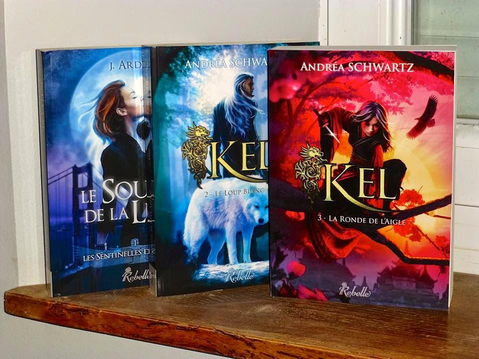 romans et livres de fantasy pour adultes et jeunes adultes