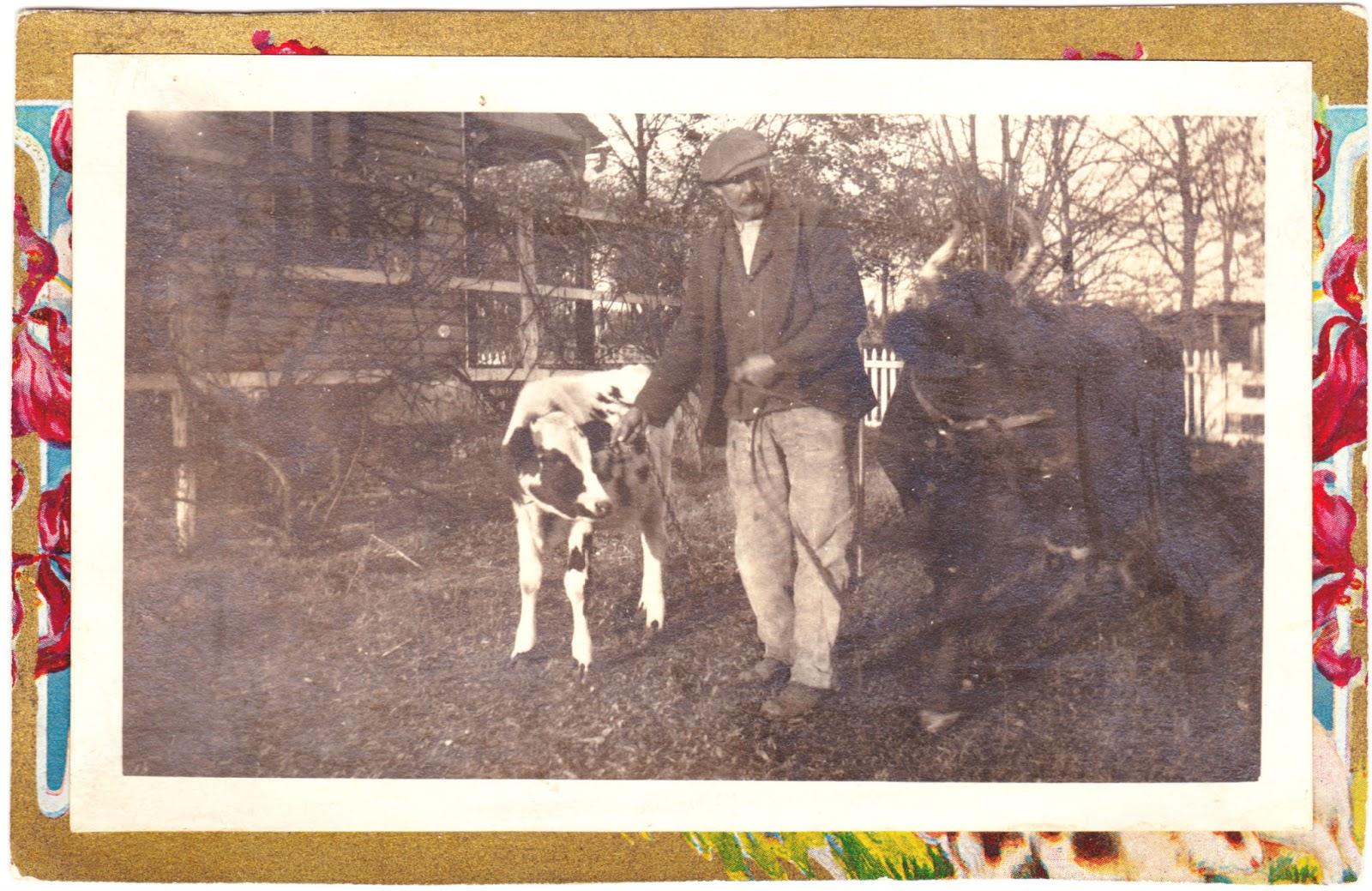http://2.bp.blogspot.com/-PJ0Ll_vMqgI/UTttoaF3c0I/AAAAAAAAP0Y/ai_RYLMT14I/s1600/Man_And_Cows.jpg