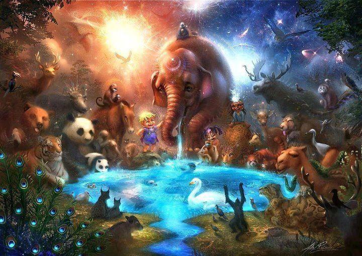 AGN VEG GLOBAL: Animal liberation WORLD rEVOLution